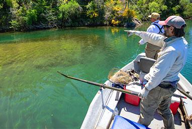 Patagonia Fly Fishing Argentina