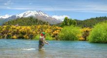 angler on the Futaleufú in argentina - el encuentro fly fishing